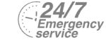 24/7 Emergency Service Pest Control in Woolwich, SE18. Call Now! 020 8166 9746